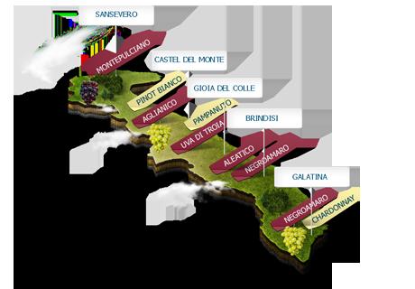 Cartina Vini Puglia.Vini Puglia Elenco Di Vini Puglia Vini Pugliesi